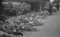 Photo-TokyoAirRaids-1945-3-10-Ueno Dead Bodies.png