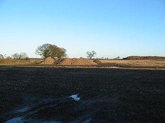 Deighton, York - Piles of harvested sugar beet at Swan Farm by Deighton