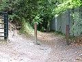 Pilgrims Way, Birling Hill - geograph.org.uk - 1961472.jpg