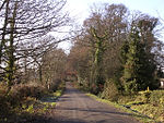 Pinkney Lane, near Lyndhurst, New Forest - geograph.org.uk - 92395.jpg