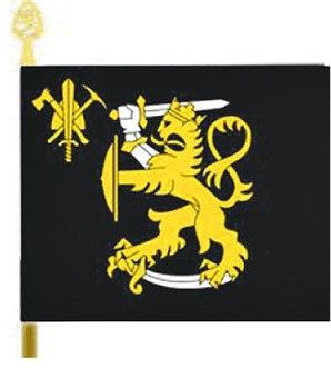 Pion- ja SKoul lippu