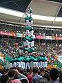 Plaça de Braus de Tarragona - Concurs 2012 P1410204.jpg
