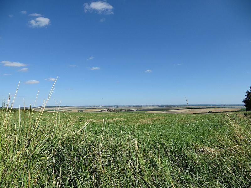 La plaine de Champagne vue depuis la commune de Broyes