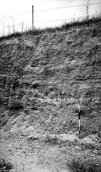 File:Pleistocene deposits of the Thames valley. Wellcome M0014910.jpg