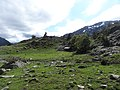Pleta de Llurri (juny 2013) - panoramio.jpg
