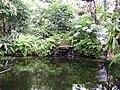 Poland. Warsaw. Powsin. Botanical Garden 008.jpg