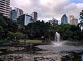 Pond of City Botanic Gardens and Brisbane CBD Australia.jpg