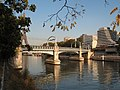 Pont rouelle paris left side.jpg