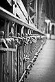 Popularne 'kłódki' na Moście Tumskim.jpg