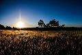 Por do sol no campo.jpg
