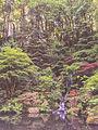 Portland Japanese Garden (23552294535).jpg