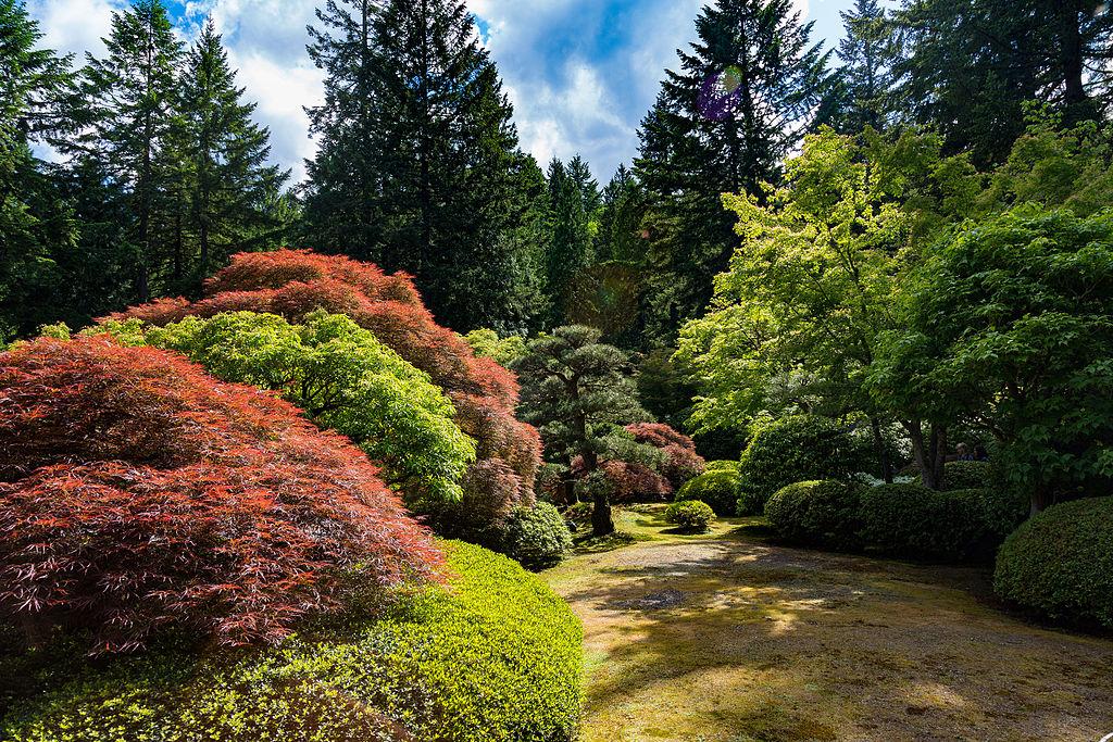File:Portland Japanese Garden - Oregon (25732059885).jpg - Wikimedia ...