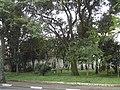 Praça Armando Luiz Argeu - panoramio (2).jpg