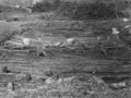 Premières fouilles prospections sites Pfyn Culture en 1871, Swiss.png