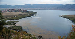 Prespa Lake at Gorica e vogel.jpg