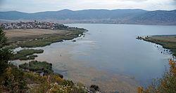 Prespa Lake at Gorica e vogel.jpg