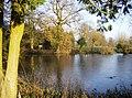 Prospect Park pond - geograph.org.uk - 649475.jpg