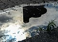 Puddle Reflection (14026859339).jpg