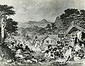 Putiki Pā, Whanganui (17191005777).jpg