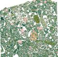 Qemscan sample alluvium.png