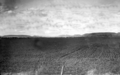 Queensland State Archives 4111 Young Wheat Darling Downs c 1930.png