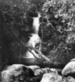 Queensland State Archives 433 Yalnungala Falls Canungra Creek West Branch Lamington National Park Beaudesert Shire September 1933.png