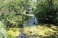 Réserve naturelle Marais Lavours Aignoz Ceyzérieu 118.jpg