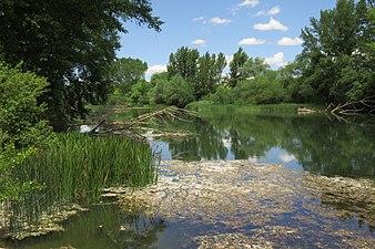 Río Ebro en Miranda de Ebro.jpg