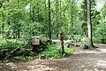 Raesfeld - Tiergarten - Waldzauber 01 ies.jpg