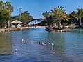 Redcliffe Lagoon - panoramio.jpg