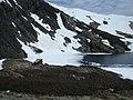 Refugio de la laguna negra - panoramio.jpg