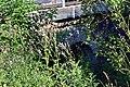 Reith bei Seefeld - Mittenwaldbahn - Wasserdurchlass vor Brücke Kaltwasserbach - 1.jpg