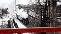 Retro-train in Tsaritsino (26406889434).jpg