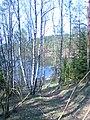 """Rezerwat przyrody """"Jezioro Głębokie"""" - panoramio.jpg"""