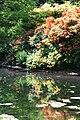 Rhododendronpark Bremen 20090513 085.JPG