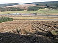 Ring Hill towards Little Clyde - geograph.org.uk - 726835.jpg