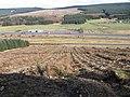 Ring Hill towards Little Clyde - geograph.org.uk - 726835.jpg