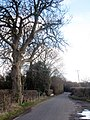 Ringlestone Road - geograph.org.uk - 1730999.jpg