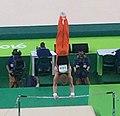 Rio 2016 Olympic artistic gymnastics qualification men (28517604844) (cropped).jpg