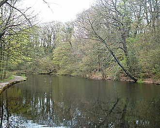 River Rivelin - The Wolf Wheel pond