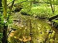 River Chor.jpg