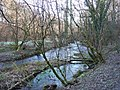 River Eye - geograph.org.uk - 1652406.jpg