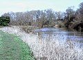 River Great Ouse near Little Paxton - geograph.org.uk - 684801.jpg