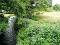 River Wey - geograph.org.uk - 1411605.jpg