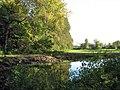 Riverside pasture - geograph.org.uk - 997212.jpg