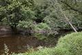 Rock Creek Park, NW, Washington, D.C LCCN2010641497.tif