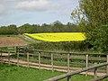 Rolling farmland - geograph.org.uk - 8612.jpg