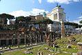 Roma - Foro 2013 009.jpg