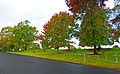 Roseville Park Oval, Roseville, from Chelmsford Avenue, Lindfield, New South Wales.jpg