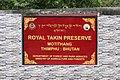 Royal Takin Preserve, Bhutan 01.jpg